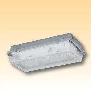 Компактный аварийный светильник из полиэстера Серии 164… KL B/D