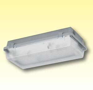 Компактный светильник из полиэстера для влажных помещений (Класс изоляции I) Серия 164… KL