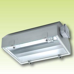 Компактный светильник для экстремально высоких температур до 100°С Серия 3072/… Н100