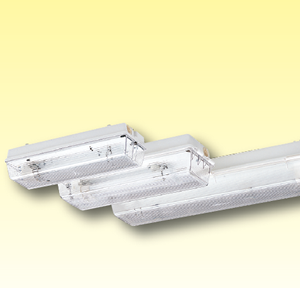 Пыле / водонепроницаемые светильники